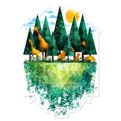 Geo forest | Colab55