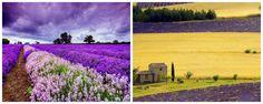 La Provenza es una región histórica y cultural de Francia, también una antigua provincia en el sureste del paí