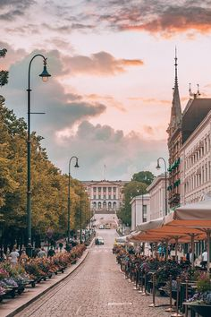 Who said Oslo has to be expensive? Save your money with these 22 absolutely free things to do in Oslo, Norway you shouldn't miss! Visit Oslo, Visit Norway, Odda Norway, Norway Oslo, Norway City, Norway Forest, Norway Bergen, Norway Map, Norway Nature