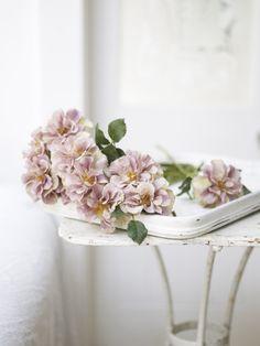 light-purple-flowers-simple-delicate
