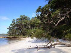 Jervis Bay, Australia, Eric Olander, Villanova University #studyabroad