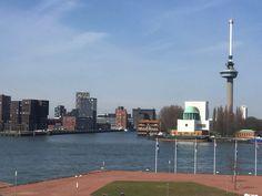 Rotterdam vanaf de ss rotterdam