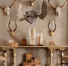 vignette design: Century Taxidermy photo most likely Restoration Hardware. Decorating with taxidermy. Casa Hipster, Antelope Horns, Moose Antlers, Moose Head, Trophy Rooms, Deco Nature, Design Apartment, Deco Originale, Glass Domes
