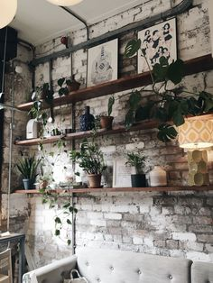 Lunch at Evelyn's Café Bar in the Northern Quarter, Manchester | review on allthatshecraves     #plants #botanic #botanical #1920s #Manchester #placestoeat #cafe #bar #northernquarter #evelyns #shelf #interiordeco #inspo