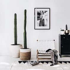 Luxe interior #home #luxe #cactus via @indiehomecollective