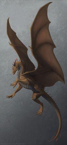 Dragons 龍 Ryu 48