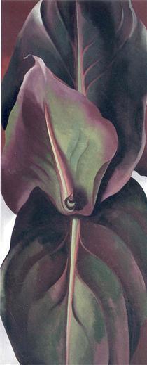Canna Leaves - Georgia O'Keeffe