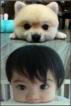 Yep, totally alike