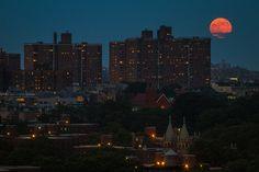Moon over Brooklyn - Barry Yanowitz