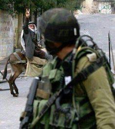 ❤ Love it, so defiant ... Long Live Palestine !!!!!!! ...  R.LM