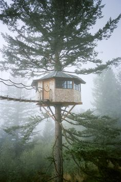Our friend and frequent contributor, Foster Huntington, lives in a very special place in Skamania County, Washington called The Cinder Cone. Built with friends, the property features several. Beautiful Tree Houses, Cool Tree Houses, Ideas Cabaña, Places Around The World, Around The Worlds, Foster Huntington, Tree House Designs, Cabins In The Woods, In The Tree