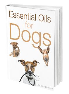 Download this eBook and learn to use Essential Oils on your Dog! Useful and covers application methods, precautions, dilution rations, reflexology chart and more!