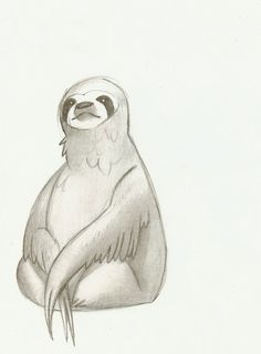 Sloth Sketch by polvoice.deviantart.com on @deviantART