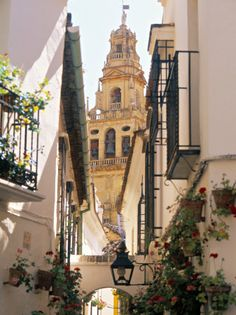 Cordoba, Andalucia, Spain Been here.as are all the hill towns of Spain. Places Around The World, Oh The Places You'll Go, Places To Travel, Places To Visit, Around The Worlds, Dream Vacations, Vacation Spots, Beautiful World, Beautiful Places