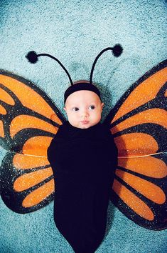 DIY Halloween costumes for kidsno sewing necessary! internet at large there are so many great ideas for DIY Halloween costumes out there. Cute Baby Halloween Costumes, Baby First Halloween, Toddler Costumes, Family Halloween, Newborn Costumes, Teen Costumes, Woman Costumes, Halloween 2013, Baby Girl Costumes