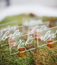 Owner of Saffron Avenue, graphic + web designer, brand stylist, calligrapher and letterer || Madison, WI