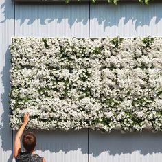 D&M Depot Karoo Verticale Plantenbak 40 x 40 cm Unique Flower Arrangements, Unique Flowers, Large Flowers, Herb Garden, Garden Tools, Flower Installation, Vertical Planter, Event Lighting, Potting Soil