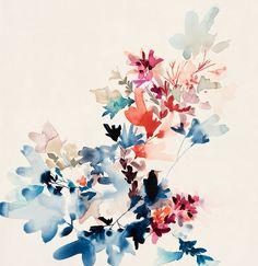 Wildflower Study M1 / JEN GARRIDO