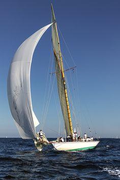 Les Voiles de St Tropez 2014 Sailing Courses, Photo Facebook, Old Money, Yacht Boat, Sail Away, Set Sail, Saint Tropez, Tall Ships, French Riviera
