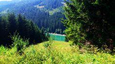 memory of summer ... Slovakia