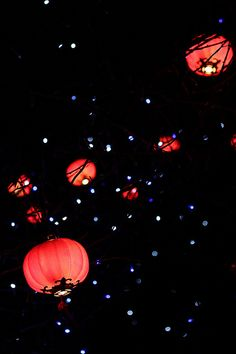 Lighting the way to new year in China.