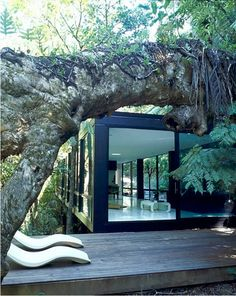 Container house in forrest ..