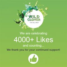 We have reached 4000+ Facebook likes. A HUGE thank you to all of you for your support!