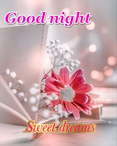 Good Night Greetings, Good Night Messages, Good Night Wishes, Good Night Sweet Dreams, Beautiful Good Night Images, Good Morning Images, Holiday Day, Lord Krishna, Afrikaans