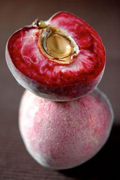pêche de vigne - french vineyard peach