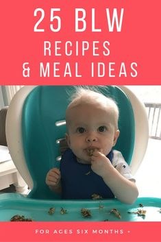25 Baby Led Weaning BLW Recipes and Meal Ideas