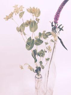 IVM Estudio | Decoración floral