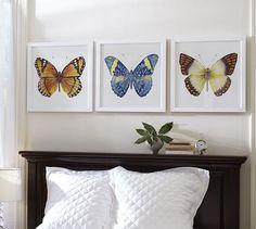 Watercolor Butterfly Framed Prints   Pottery Barn