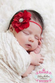 Sweet swaddled baby with a touch of red. Newborn Christmas Pictures, Newborn Headbands, Headband Baby, Cute Baby Wallpaper, Newborn Photography Poses, Girl Photo Shoots, Christmas Baby, Christmas Headbands, Cute Baby Videos