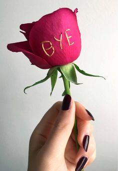 sophie king embroiders bold messages on delicate roses https://www.designboom.com/art/sophie-king-roses-embroidery-09-02-2017/?utm_content=buffer2df29&utm_medium=social&utm_source=pinterest.com&utm_campaign=buffer