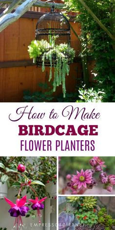 Birdcage planters are a favorite with creative gardeners. These tips share ideas for setting up a new or upcycled birdcage as a planter for succulents or annuals. #gardening #gardenart #gardenjunk #birdcage #repurpose #empressofdirt #flowerplanter