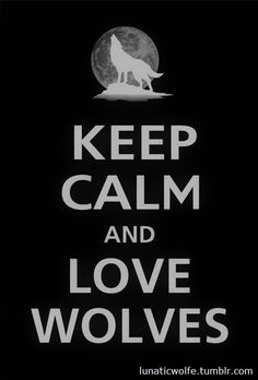 I am an amateur wolf biologist. I have collected books, watched documentaries, and loved my fellow wolves since childhood. I love wolves!