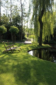 The weeping willow I have always wanted in my yard, overlooking the round pond, beautiful