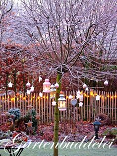 Weihnachtsdeko im Garten                                                                                                                                                                                 Mehr