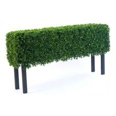 Artificial Boxwood Hedge on 'legs' - these are ideal for going in the ground or if you have your own trough or planter that would look just perfect topped with fake hedging then this way of doing it is perfect for you.