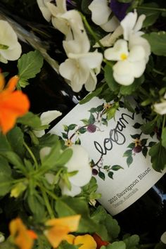 Violets and Logan Sauvignon Blanc from Australia.