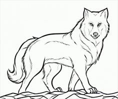 Cool Wolf Coloring Pages Printable. On this page, you will discover the wolf coloring pictures. The wolf is a spectacular and mysterious animal! Puppy Coloring Pages, Coloring Pages To Print, Coloring For Kids, Adult Coloring Pages, Coloring Sheets, Coloring Books, Free Coloring, Wolf Outline, Tier Wolf
