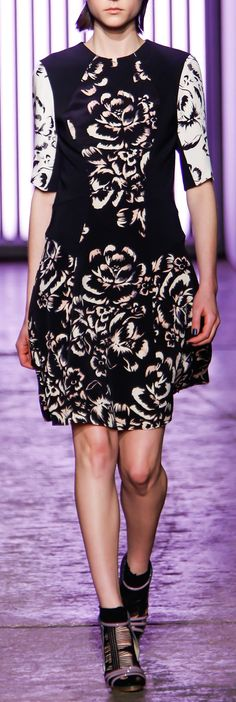Rebecca Taylor | Fall '13 Collection By Jugni's Jania