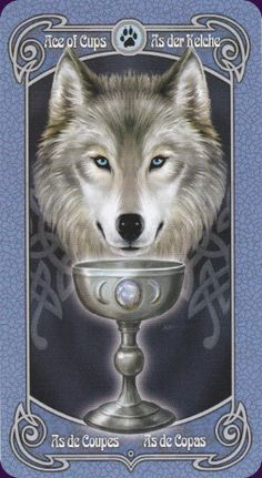 Ace of Cups - Legends Tarot - by Anne Stokes Celtic Druids, Ace Card, Anne Stokes, Beautiful Fantasy Art, Major Arcana, Oracle Cards, Tarot Decks, Tarot Cards, Wiccan