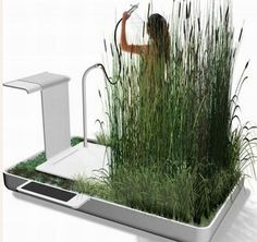 Phyto-Purification Bathroom, A water saving shower... Imagine showering in reeds and sand!