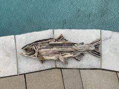 Driftwood Fish, Driftwood Sculpture, Driftwood Crafts, Clean Water Charity, Custom Art, Georgian, Rock Art, Photo Galleries, Art Gallery