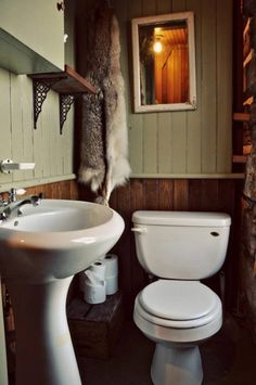 Tiny Trout River Log Cabin 0011