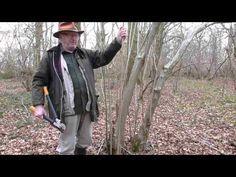 walking sticks stick making stick straightening demonstration series 2 - YouTube