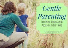 Gentle Parenting, Ex