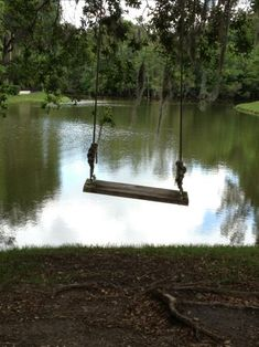 Writing Prompt: Write a scene based around this empty swing.