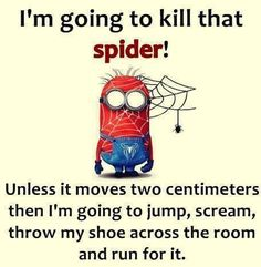 That is so me, I HATE spiders